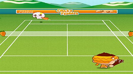 Game's screenshot - Crazy Tennis