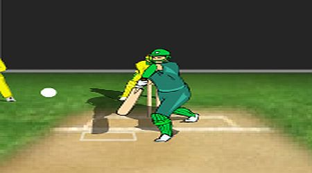 Game's screenshot - Cricket Overdose