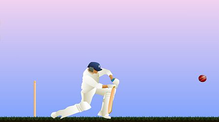 Game's screenshot - Top Spinner Cricket
