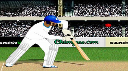 Game's screenshot - Turbo Cricket