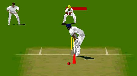 Game's screenshot - Virtual Cricket