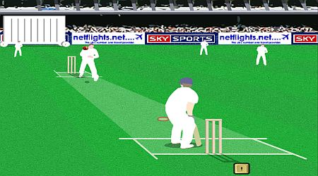 Game's screenshot - World Cricket Challenge